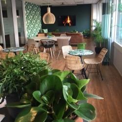 court garden lounge3 (2)